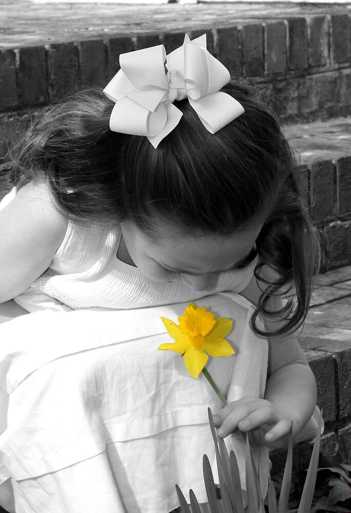 Daffodil by PirateLooksat40