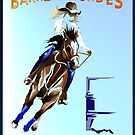 BARREL HORSES ROCK by Lotacats