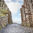 Gate fit for a Giant_Giants Causeway by Sharon Kavanagh