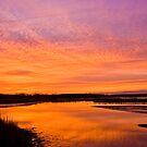 Allens Fresh Pond 1 by Paul Lenharr II