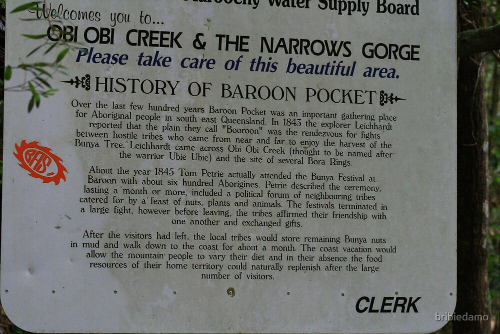 The Story of Baroon Pocket by bribiedamo
