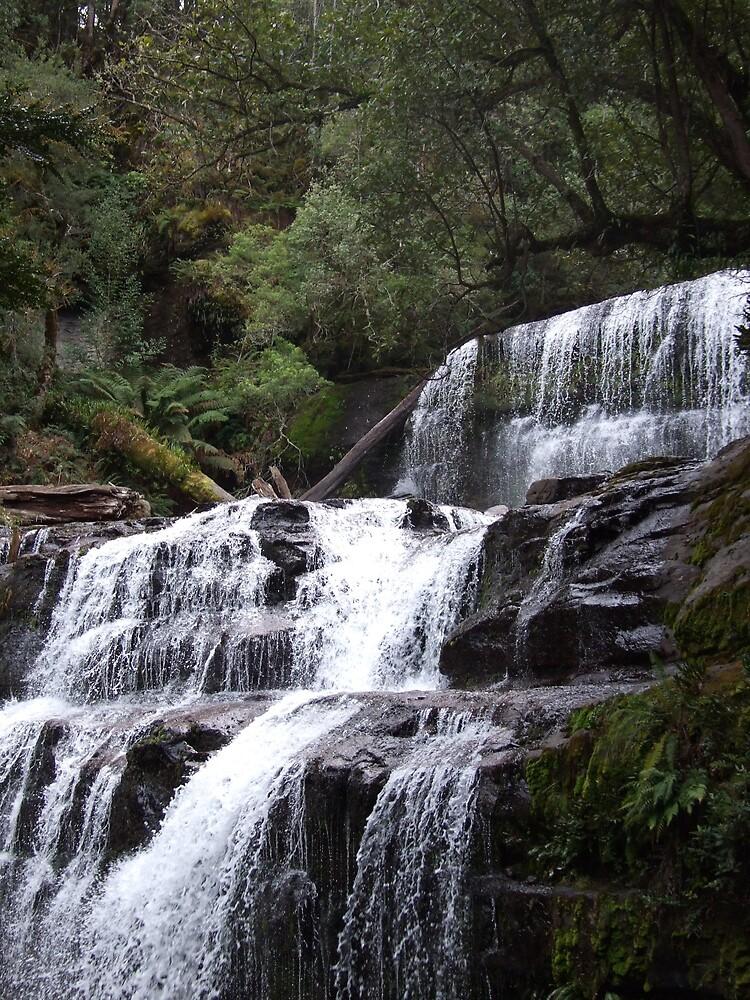 Liffy Falls by Cassandra Devine