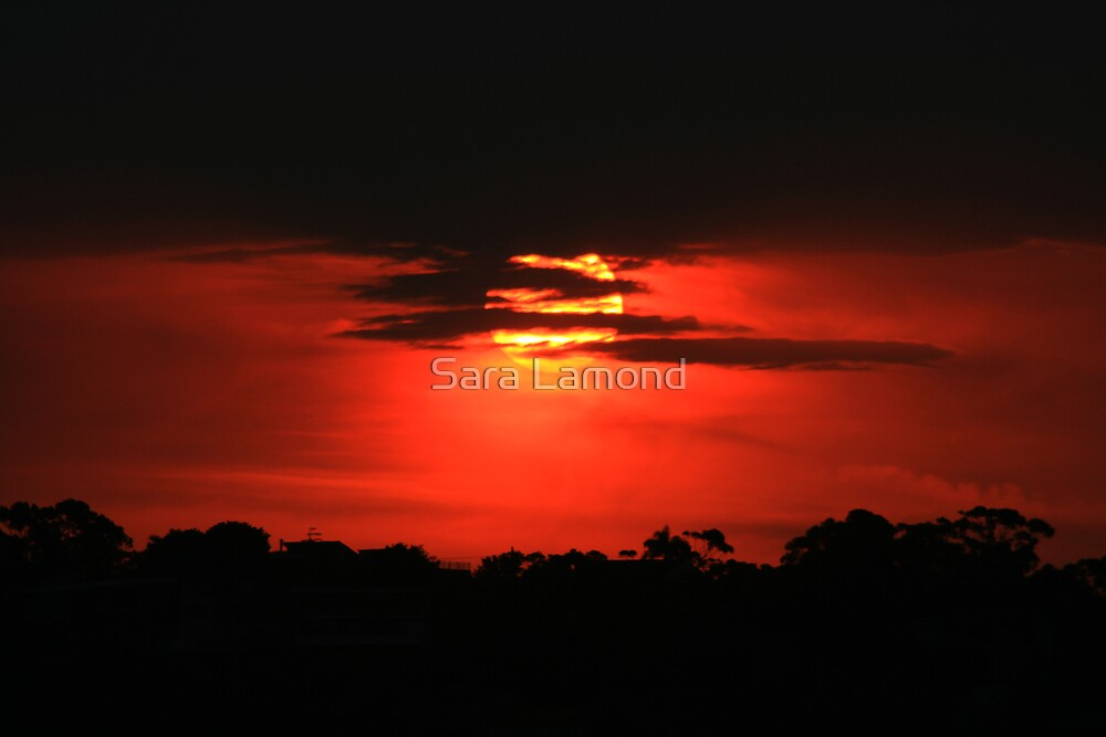 Blood red sunset by Sara Lamond