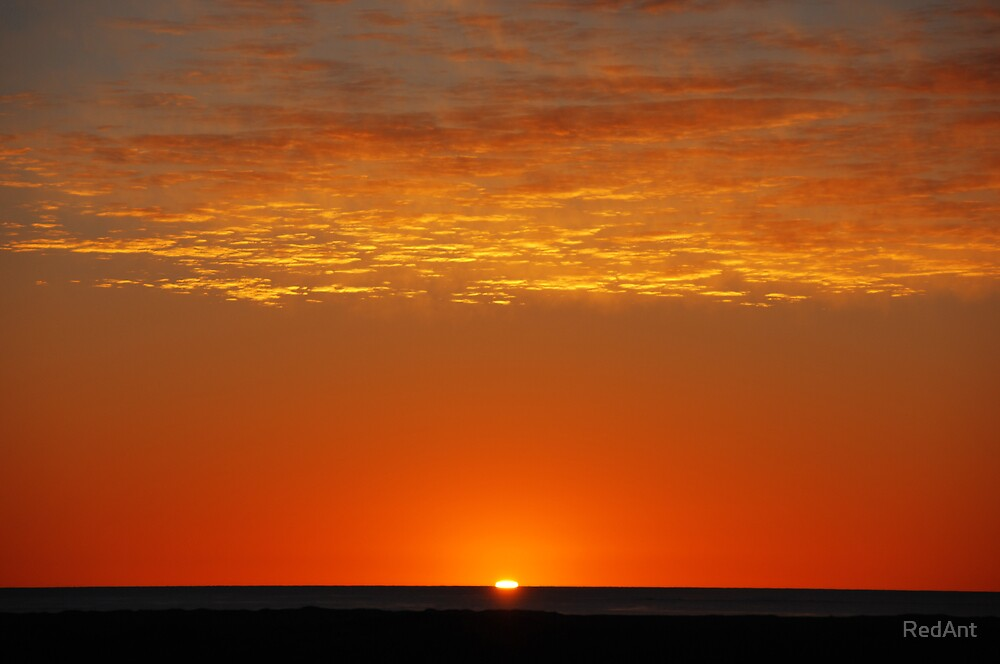 Orange Sun Sleepy by RedAnt