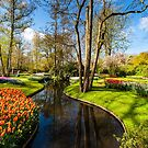 Keukenhof in Spring by Sean Allocca