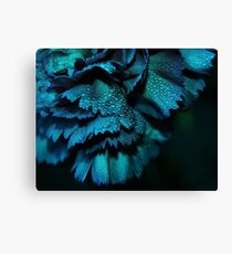 Carnation - Powder Blue Canvas Print