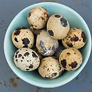 Quails eggs in green bowl by Flo Smith