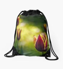 tulip with stripe on shady glade Drawstring Bag