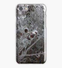 Winter Ice iPhone Case/Skin