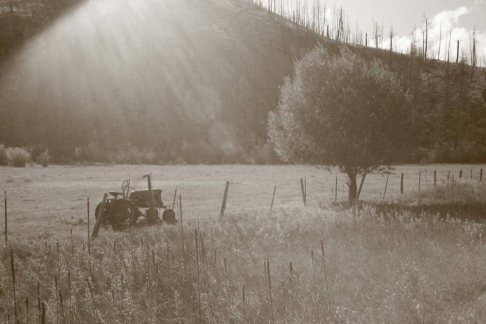 Bitterroot Valley Farming by Jessica Lynn