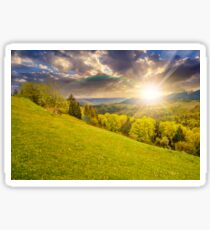 meadow with trees in mountains at sunset Sticker