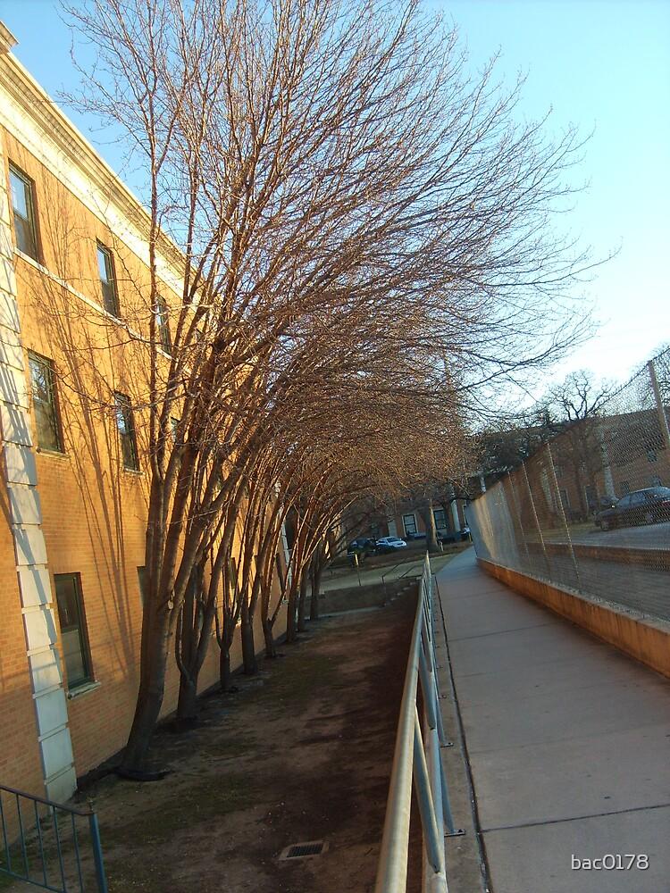 Official Crumley Sidewalk by bac0178