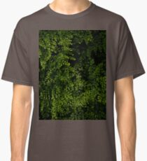 Small leaves.  Classic T-Shirt