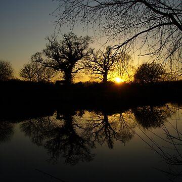 Lakeside sun set  by shanecox704