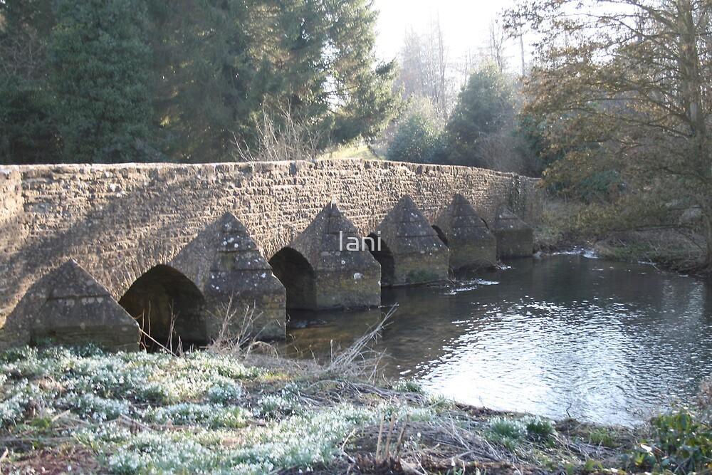 Easton Grey Bridge  by Iani