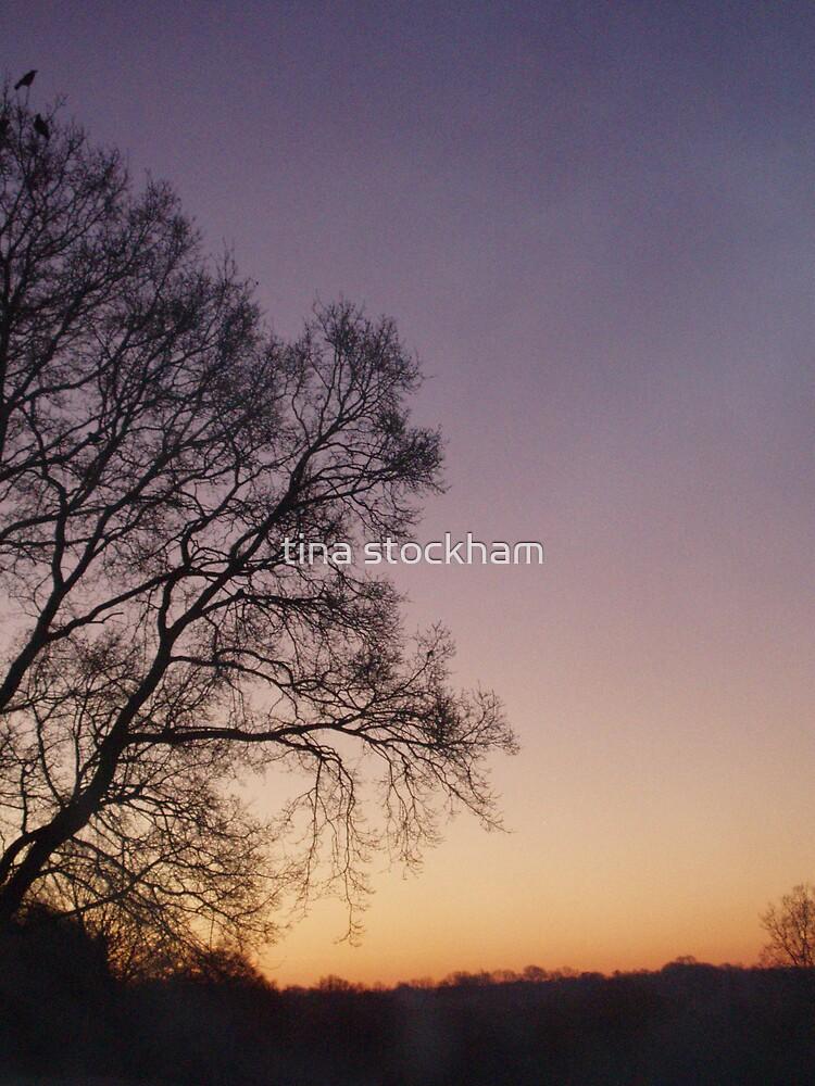 as the sun apears  by tina stockham