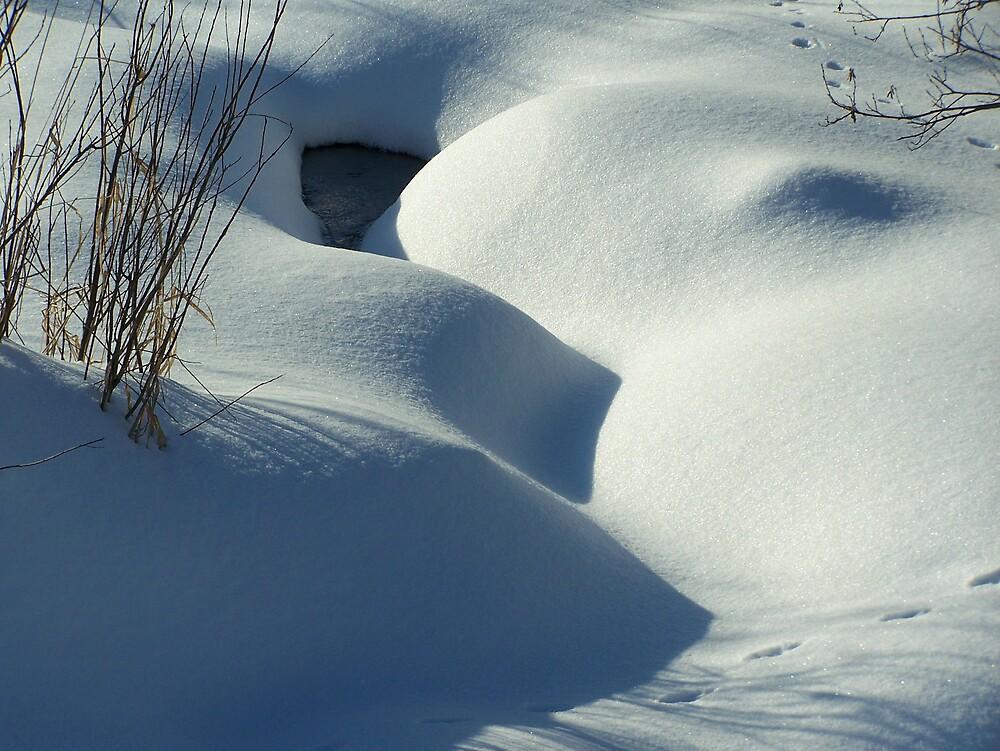 Snow Covered Stream by Gene Cyr