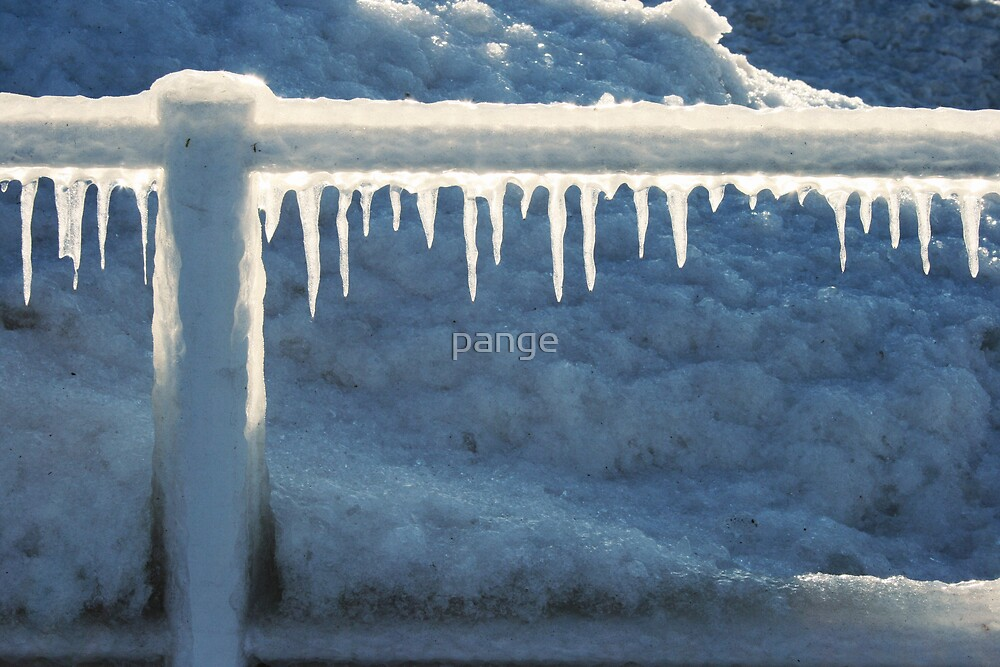 Railing at Sunset by pange
