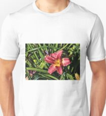 Red Spider Daylily T-Shirt