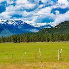 Wild Horse Plains, Montana, USA by Bryan D. Spellman