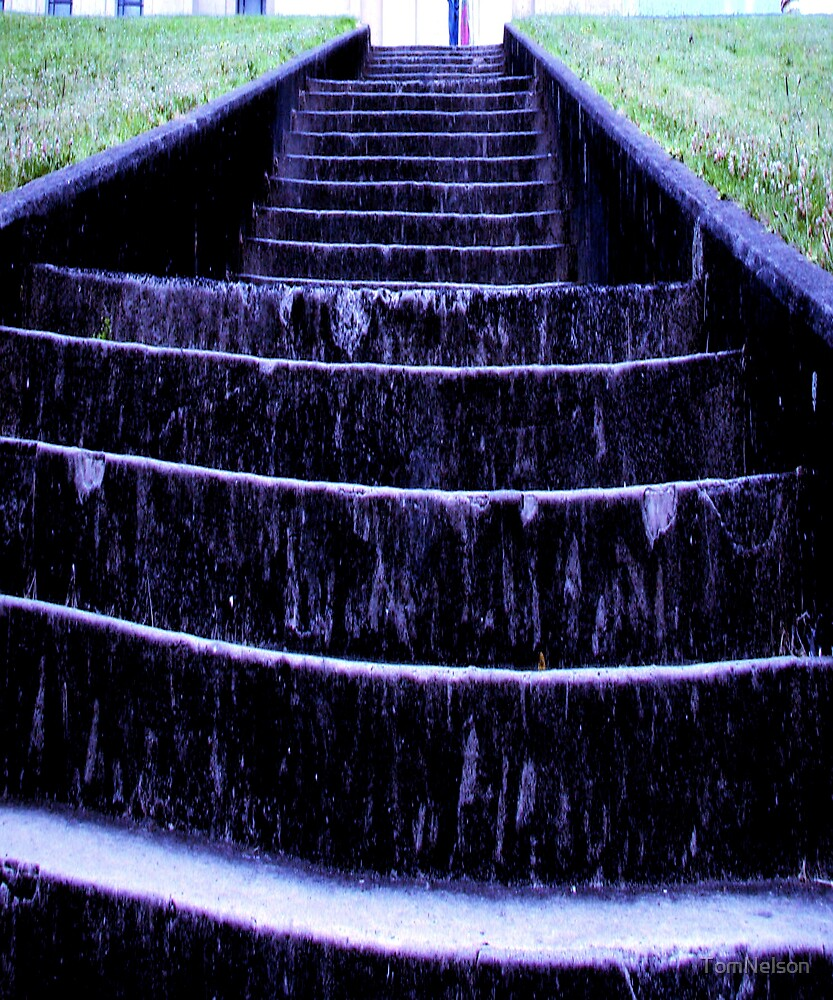 19 Steps by TomNelson
