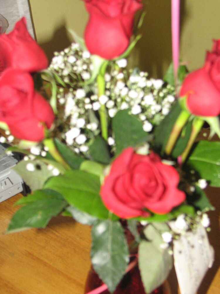 Roses by ANibbe