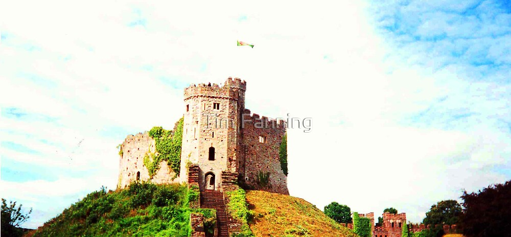 Cardiff Castle by Tim Fanning