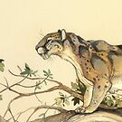 NATURAL HISTORY - Dinictis felina by thoughtsupnorth