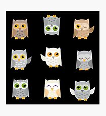 Cute owls on a black background Photographic Print