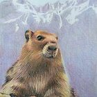 Olympic Marmot by WyoClements