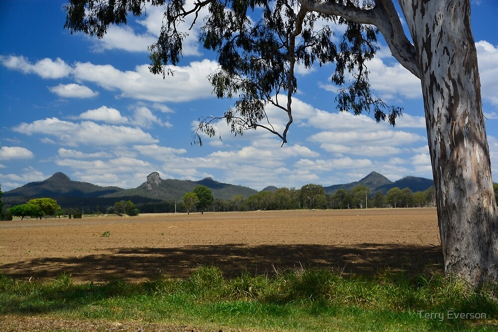 Teviot Ranges by Terry Everson