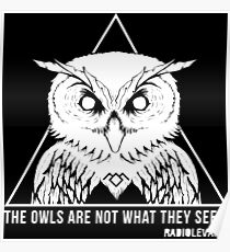 THE OWLS ARE NOT WHAT THEY SEEM Poster
