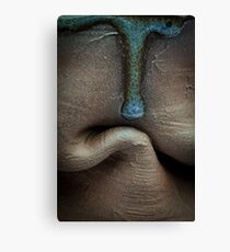 The Crawling Pottery Canvas Print