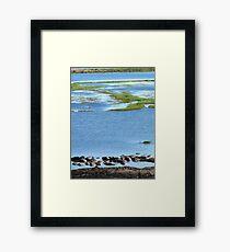 chobe hippos Framed Print