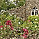 The Gate Lodge......................N Ireland by Fara