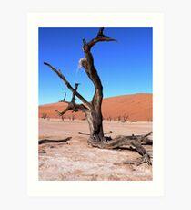 desert tree and nest Art Print