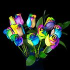 Rainbow Roses by Maria Dryfhout