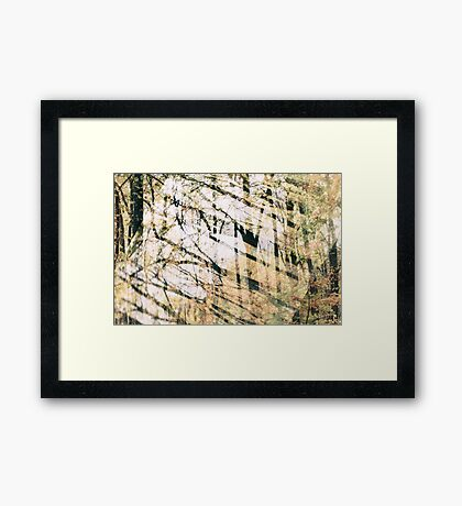 Abstract Autumn Woods Framed Print