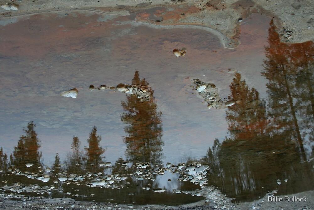 Iron Tree Reflection by Billie Bullock