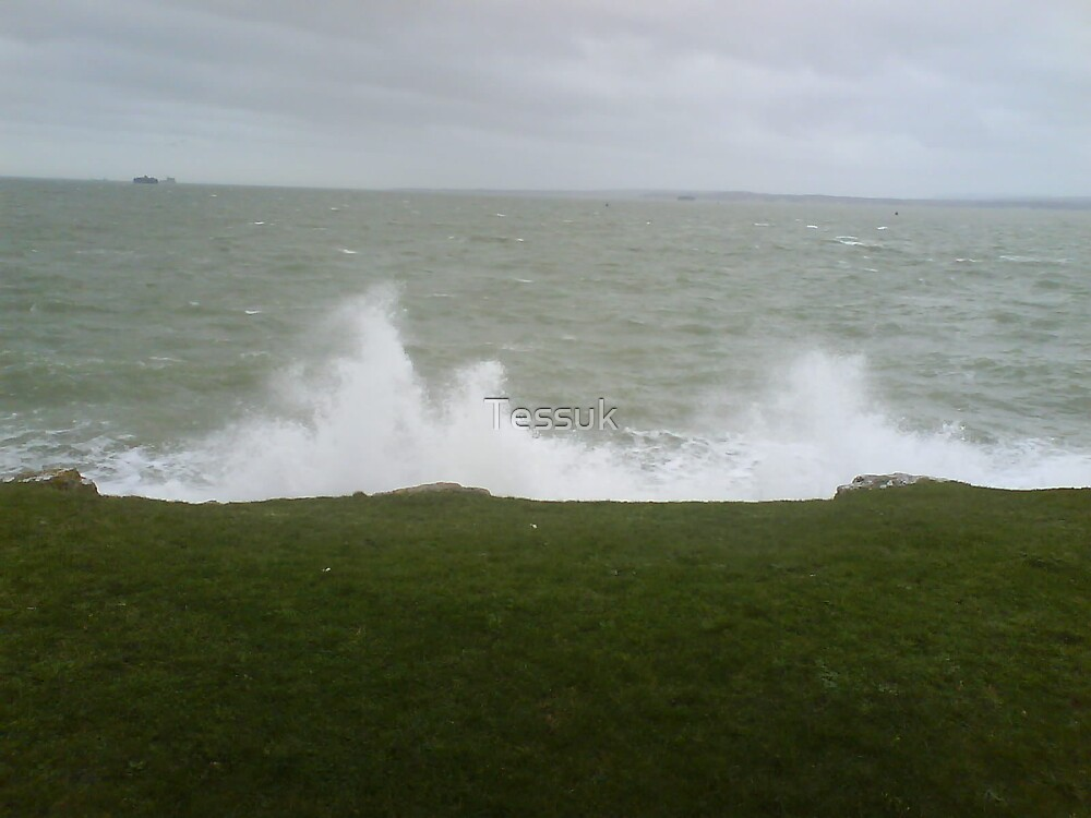 Wild Waves Splash by Tessuk