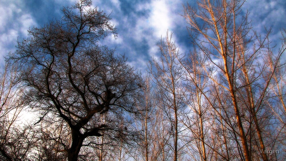 Trees & Clouds by Vargen