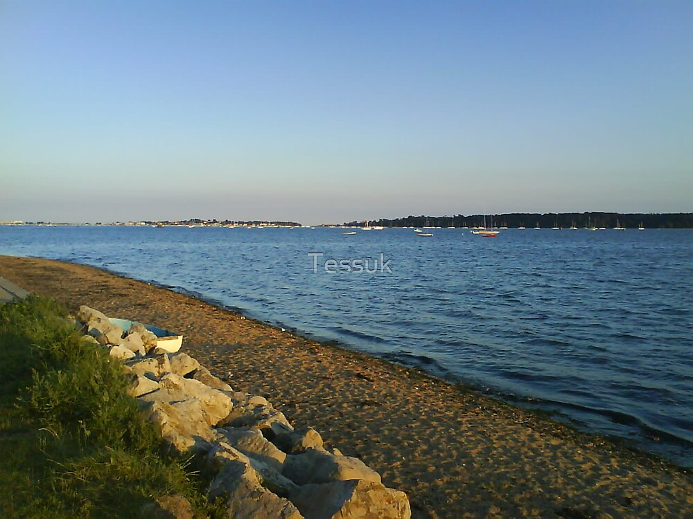 The Coast By Evening Light by Tessuk