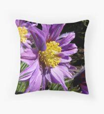 The Colour Lilac- Michaelmas Daisy - Southland Throw Pillow
