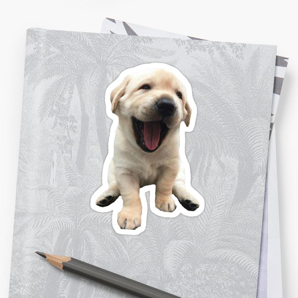 Welpe des goldenen Apportierhunds Sticker