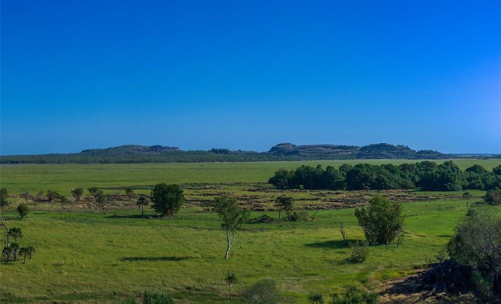 Outlook - Ubirr - Kakadu National Park by David Blackwell
