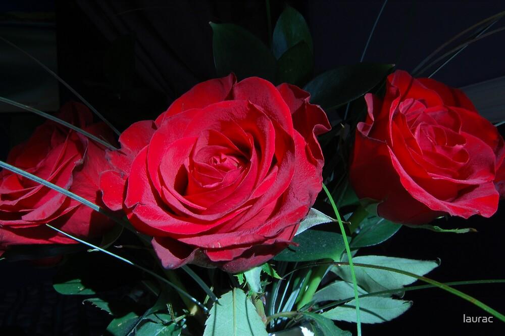 valentine by laurac