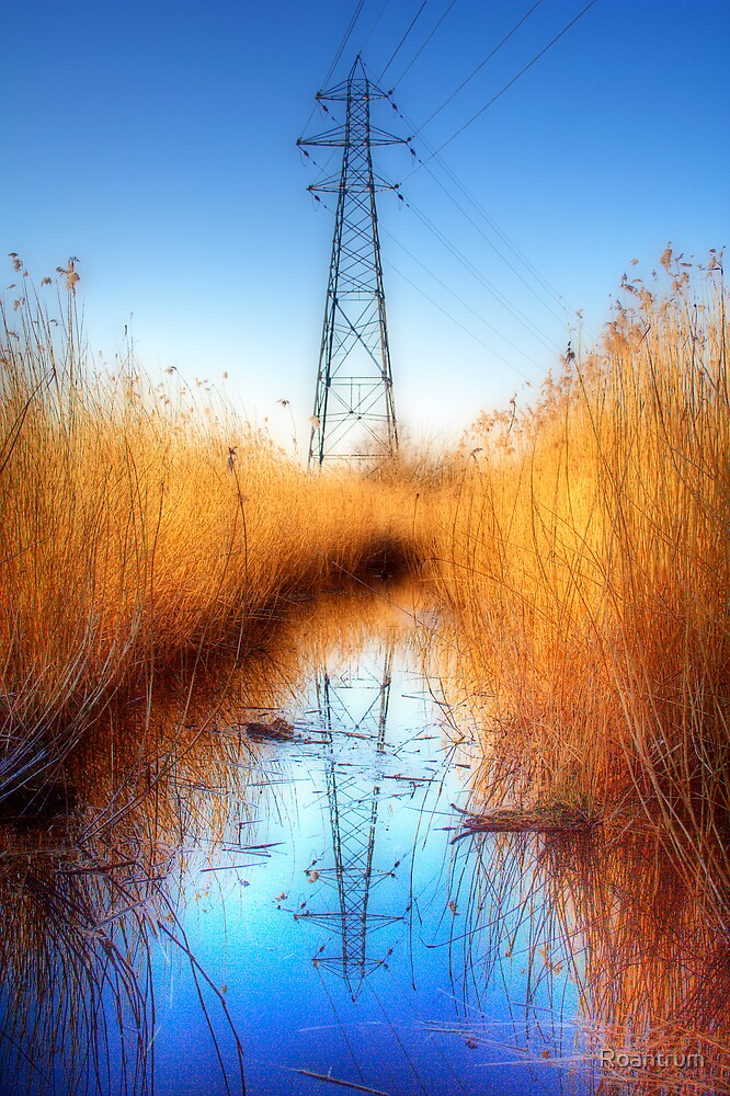 Pylon in a Reed Bed by Roantrum