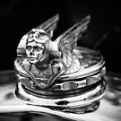 1931 Chevrolet Hood Ornament by dlhedberg