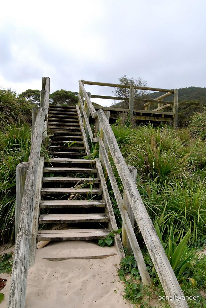 Wooden Steps by bonalexander