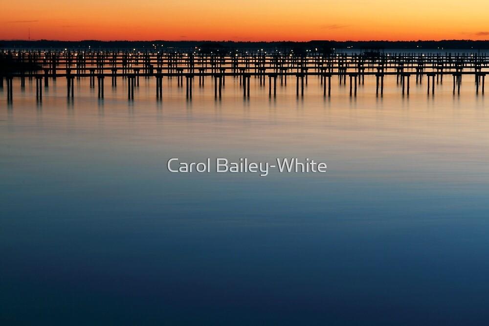 Smooth as Silk by Carol Bailey-White